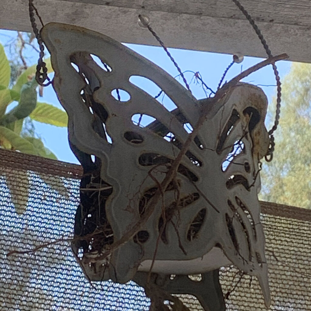 butterfly candle holder with a bird's nest inside