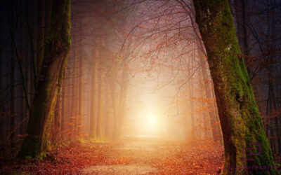 Welcoming Autumn, Setting Intentions